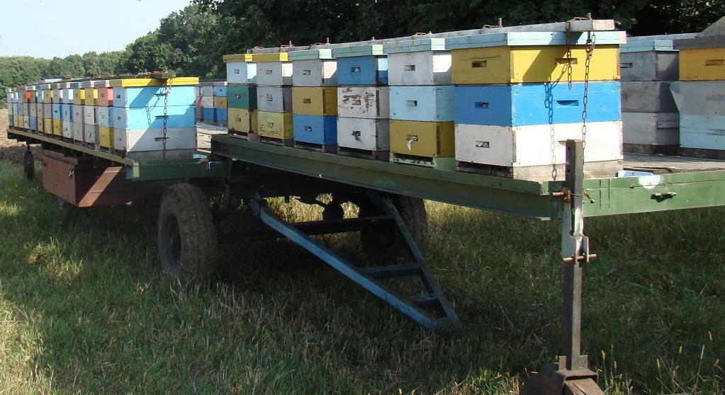 Прицепы для перевозки пчёл своими руками 247