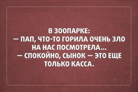 12644829_171775683192104_102846806947298