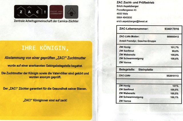 ZAC 1.jpg
