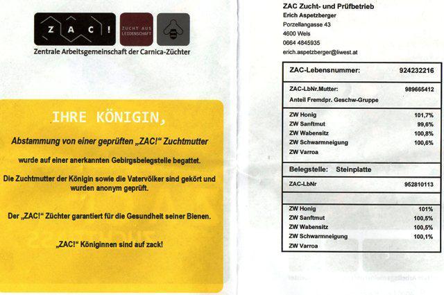 ZAC 2.jpg