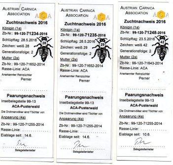 паспорт на маток Пернера.jpg