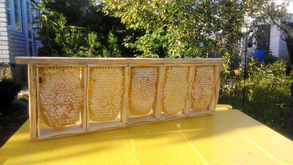Рамки для сотового мёда своими руками 21