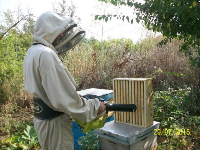 Удалитель для пчел своими руками 576