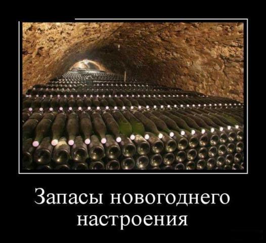 1482884616_31.jpg
