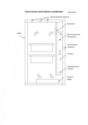 инкубатор.jpg