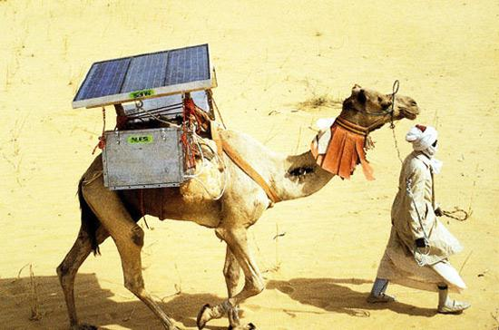 На солнечных батареях.jpg