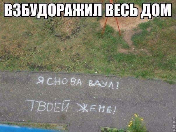 FB_IMG_1482702820580.jpg