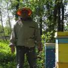 Бджоляр-Beekeeper