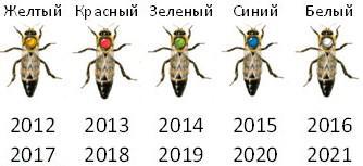 cveta-dlya-metok-e1429633855153.jpg