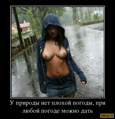 1501040954_12.jpg