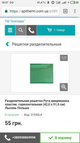 S80203-18373563.jpg