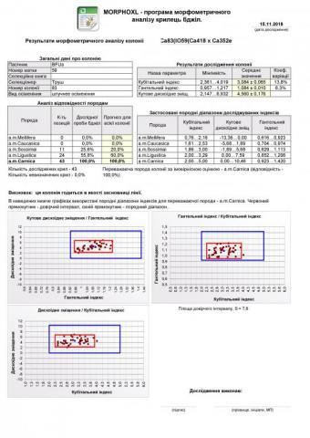 Page1.thumb.jpg.7078d641423154b174526db5df469638.jpg