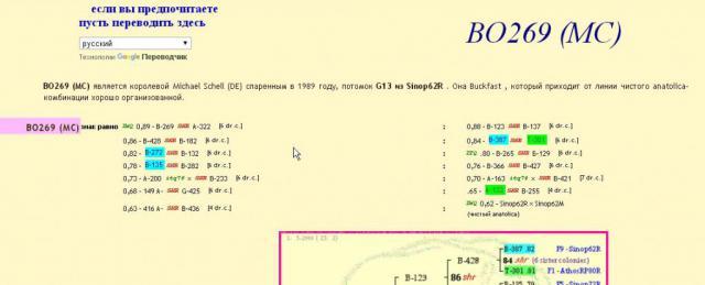 5c2de3861df19_ScreenShot3.thumb.jpg.a35859b706b1a885c1ed2c4dc0f67184.jpg