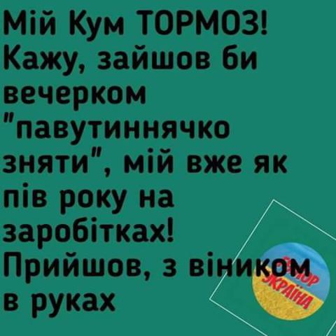FB_IMG_1548417084975.jpg