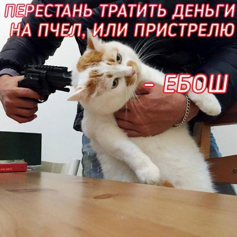71065888_158602578583875_3855465796566253568_n.jpg