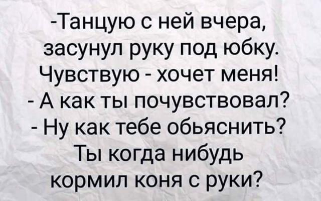 FB_IMG_1576396976209.jpg