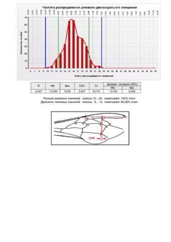 Summary-Altaj-DsA.jpg