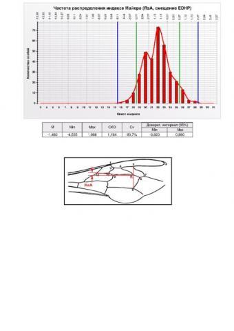 Summary-Altaj-RsA.jpg