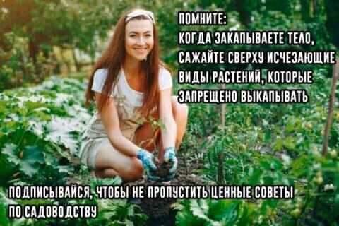 FB_IMG_1612049133267.jpg