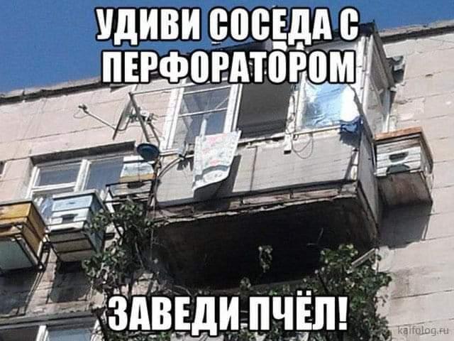 FB_IMG_1613073109613.jpg