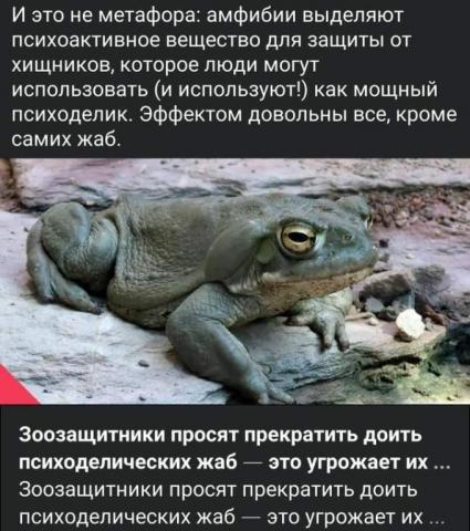 FB_IMG_1613507603835.jpg